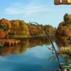 Играть На рыбалку онлайн