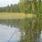 Играть Живая рыбалка онлайн